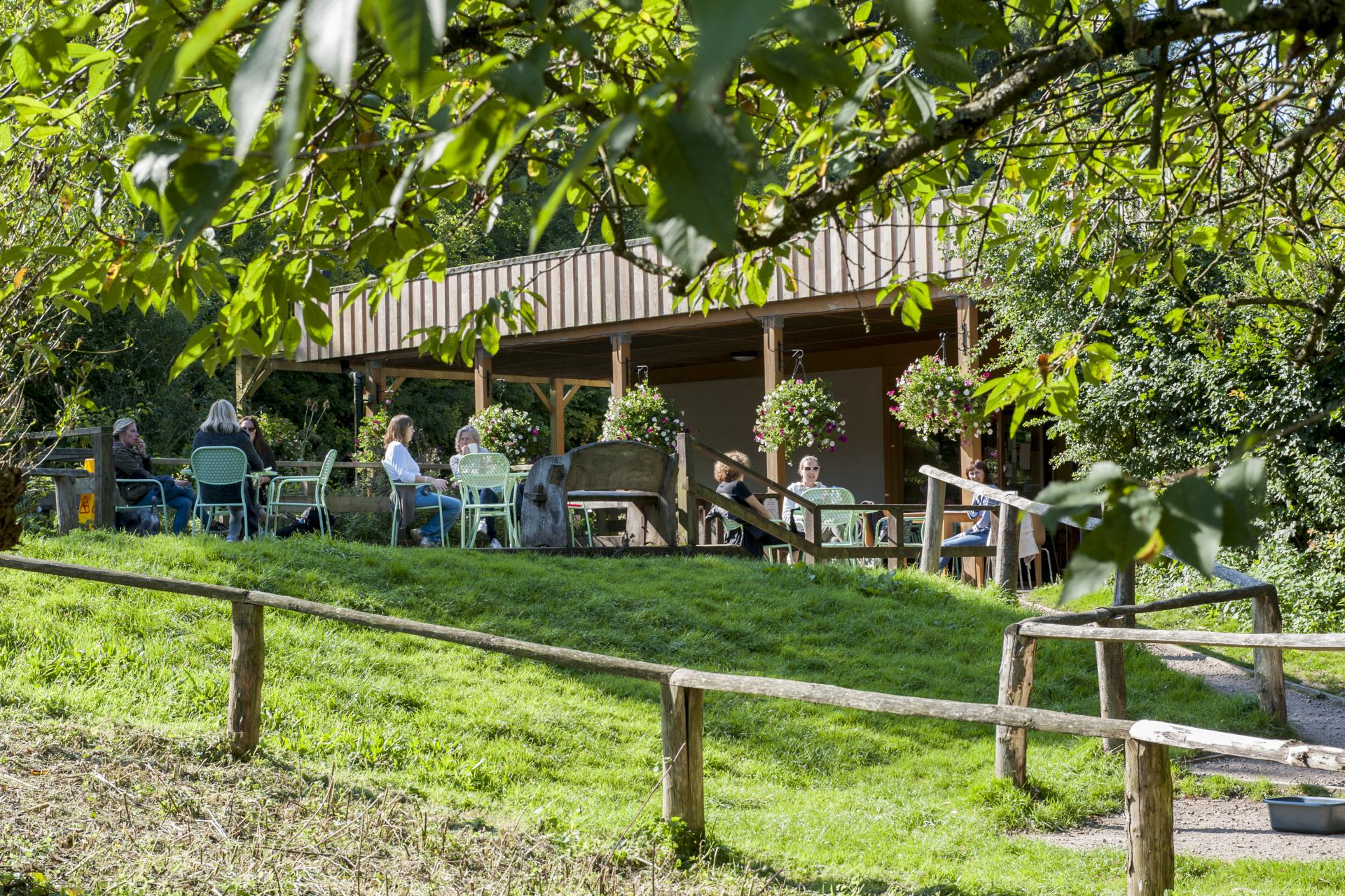 Green-Roof-Cafe-High-Elms-Bromley